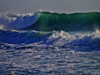 wild-ocean_1920 x 1440 - takopix